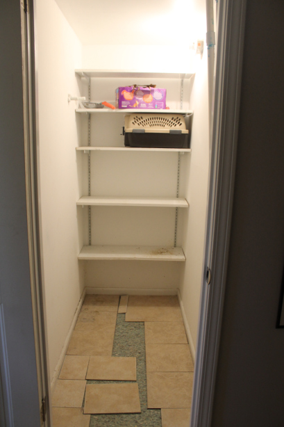 cat closet before